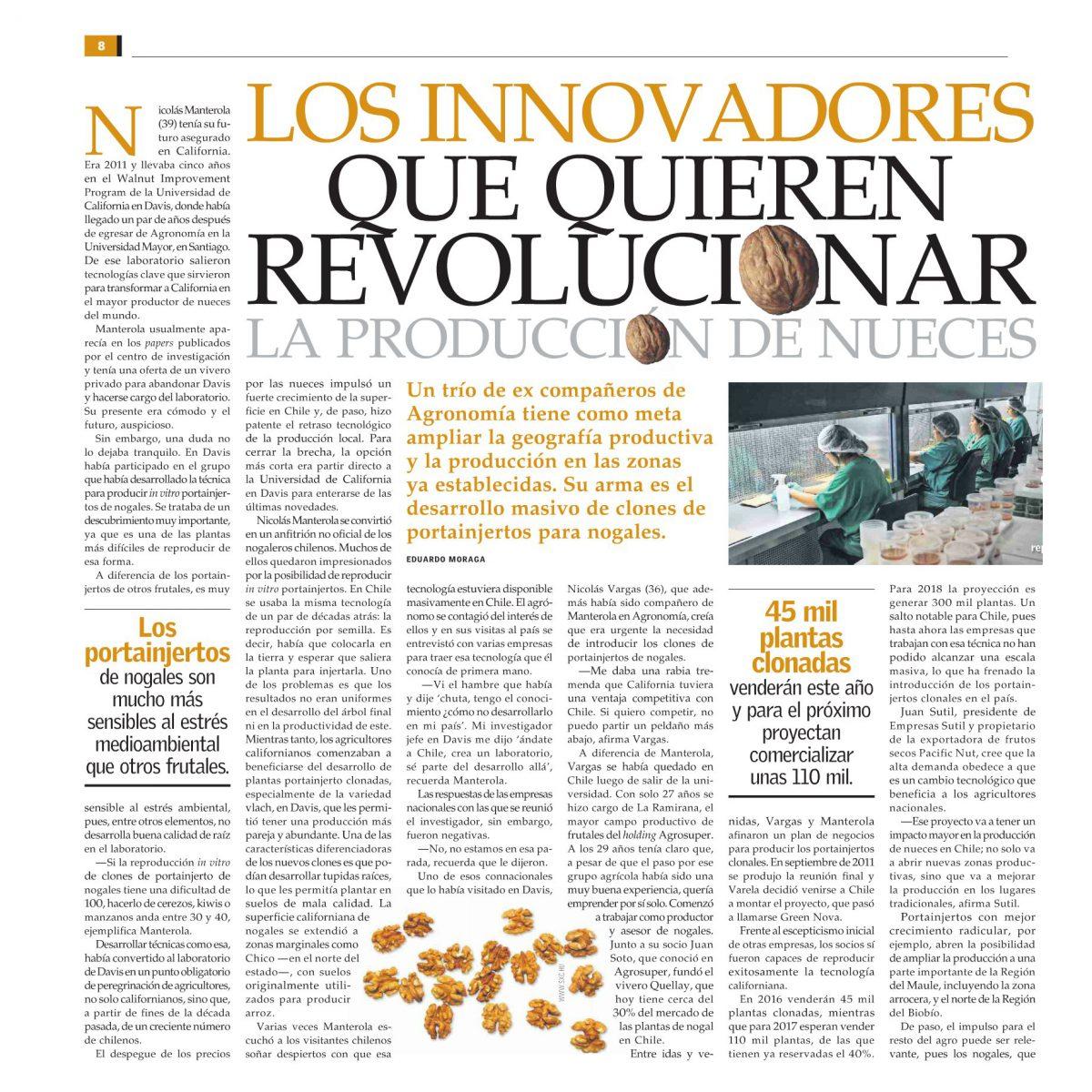 Los innovadores que quieren revolucionar la producción de nueces