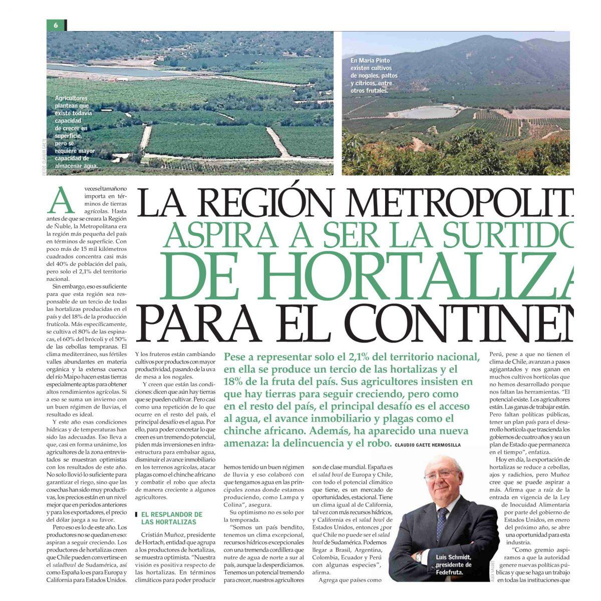 La Región Metropolitana aspira a ser la surtidora de hortalizas para el continente