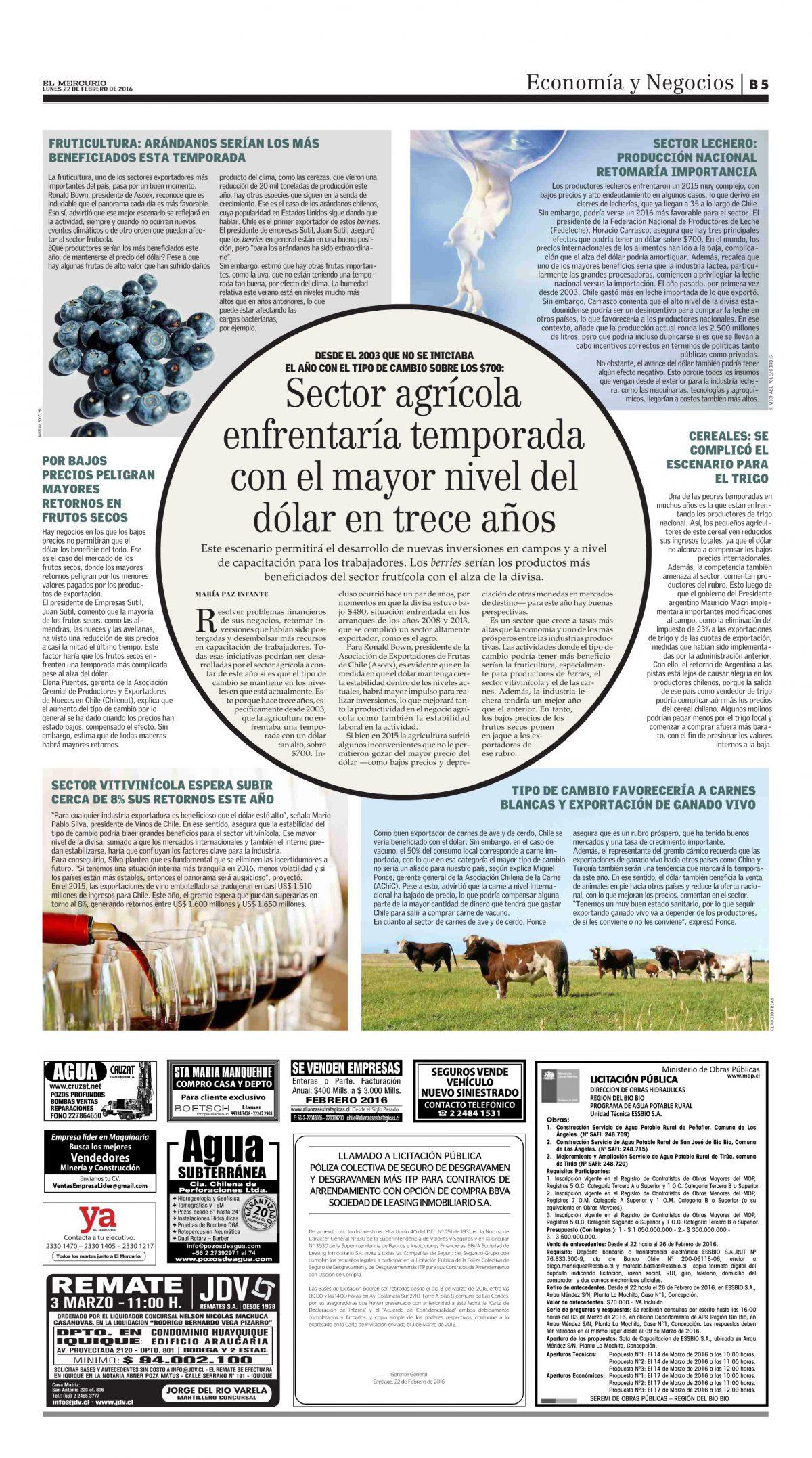 Sector agrícola enfrentaría temporada con el mayor nivel del dólar en trece años